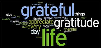 Thankfulness Quotes Beauteous Thanksgiving 48 Quotes To Make Gratitude A Habit Everyday Plus A
