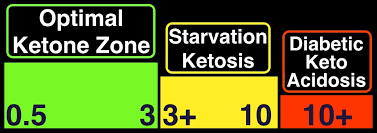 Ketones And Your Brain Metabolic Performance