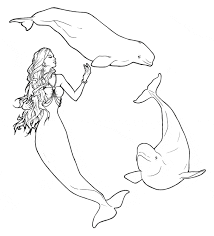 Small Picture Beluga Whale Coloring Page Free Printable Coloring Pages Coloring