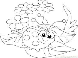 Small Picture stunning Marvelous Ladybug Coloring Page Kids Pages Between Leafs