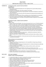 Franchise Development Manager Sample Resume Development Manager Senior Resume Samples Velvet Jobs 24