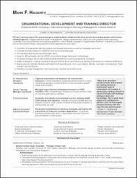 Director Of Nursing Resume Best Communication Resume Examples Personal Director Nursing Resume