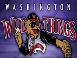 Guide To The Washington Wild Things Cbs Pittsburgh