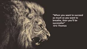 Motivational Quotes Impressive Top 48 Motivational Quotes Joburg