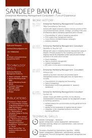 Enterprise Marketing Management Consultant Resume samples