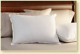 Pillow - Pacific Coast Goose Down and Feather Pillows