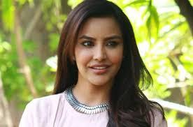 English Vinglish actress Priya Anand accepts APOLOGY of TROLL, read details