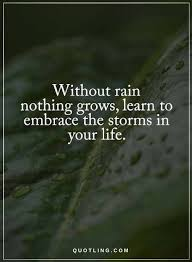 Wise Quote About Life Fascinating Quotes Without Rain Nothing Grows Learn To Embrace The Storms In