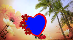 hd beautiful love wedding frame background animated s you