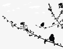 bird branch silhouette clip art. Interesting Silhouette Branches Buds And Silhouettes Of Birds Branch Silhouette  Shoot PNG Throughout Bird Branch Silhouette Clip Art B