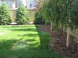 24 Beautiful Backyard Landscape Design Ideas  Backyard Good Trees For Backyard