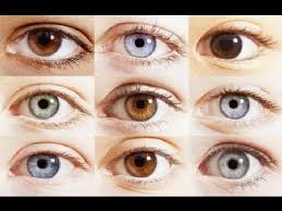 Baby Eye Color What Determines The Change In Eye Colour