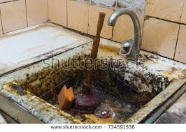 clogged sink stock images royalty free images vectors