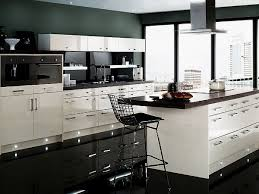 Black And White Kitchen Designs Fantastic Kitchens Pinterest Images 7