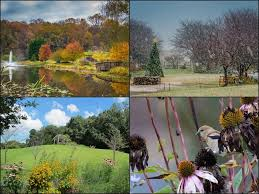 meadowlark botanical gardens is a 95 acre public garden and park in vienna virginia the gardens feature three ponds two gazebos an island bridge