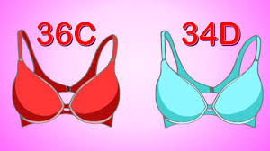 measure your bra size 4 ways to measure your bra size wikihow