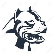 Pitbull Dog Sketch On White
