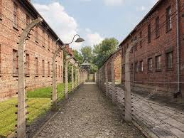 barbed wire fence concentration camp. Auschwitz, Concentration Camp (barbed Wire Fence) \u2014 Foto Von Dusan964 Barbed Fence A