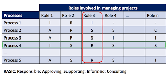 The Rasic Chart A Key Tool For Collaboration In Projects