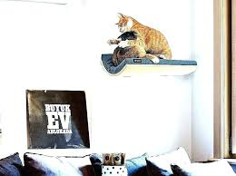 wall mounted cat stairs on perch c wall mounted cat stairs
