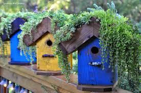 Diy Birdhouse Rebeccas Bird Gardens Blog Diy Living Roof Birdhouse