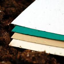 wildflower seed paper