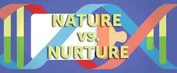gender differencesthe nature versus nurture debate and  seventh grade nature vs nurture debate the falcons flyer intelligence and essay 192 nature and nurture