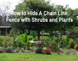 hiding chain link fences