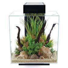 Fluval Spec V Black Slip On Led Light Fluval Edge 2 0 Black Aquarium Kit 12 Gallon Aquarium Kit