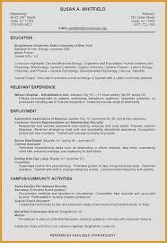 Car Salesman Resume Resume Examples For Car Sales At Resume Sample ...