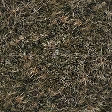 seamless dark grass texture. Dry Grass Texture Seamless 12931 Dark I