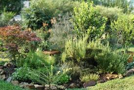 Small Picture Herb Garden Design Ideas Best Home Decor inspirations
