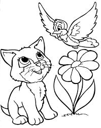 Coloriage Chat Et Oiseau Imprimer