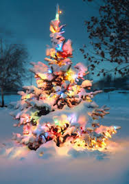 christmas trees decorated outside snow.  Decorated 10 Natural Outdoor Christmas Tree Decorations Inside Trees Decorated Outside Snow O