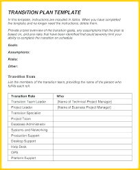 Transition Plan Template Word Project Transition Template Bottleapp Co