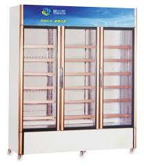 Stand Up Display Freezer China Side by Side Three Glass Door Upright Display Freezers for 48