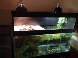 Turtle Tank Decor Diy Turtle Tank Topper My Projects Pinterest Need To