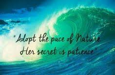 Beautiful Quotes On Nature Best of 24 Of The Most Beautiful Quotes About Nature Pinterest Nature