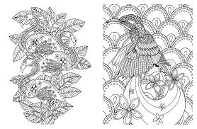 amazon posh coloring book soothing designs for fun relaxation posh coloring books 0050837348899 andrews mcmeel publishing books