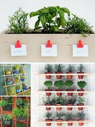Small Picture 206 best Planted images on Pinterest Plants DIY and Deko
