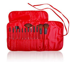 shany professional 12 piece cosmetic brush set with pouch red walmart