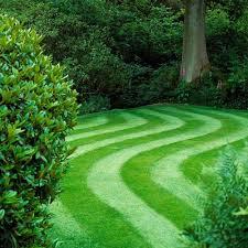 How to Grow Greener Grass   Family Handyman