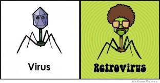 Virus Retrovirus | WeKnowMemes via Relatably.com