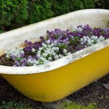 using an old bathtub as a container in