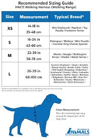 Halti Walking Harness Company Of Animals