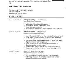 download canadian resume builder best resume builder software ...