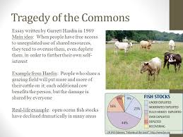 introduction to environmental science introduction to  31 tragedy of the commons essay