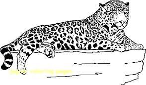 Jaguar Coloring Pages Jaguar Animal Coloring Pages Jaguar Coloring
