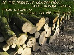 Slogans For Saving Trees