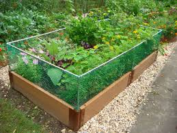 Small Picture Best Raised Garden Bed Design Home Furniture Design